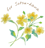 for Sotsu-hana